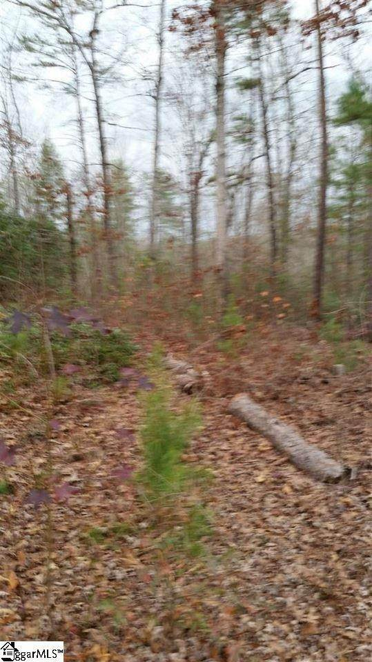 6. Residential Lot for Sale at The Cliffs At Keowee, Sunset, SC 29685