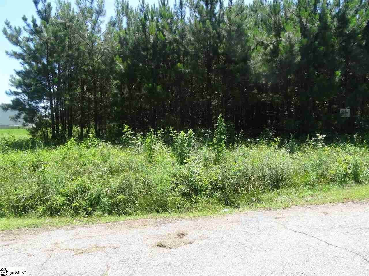 Residential Lot for Sale at Townville, SC 29689
