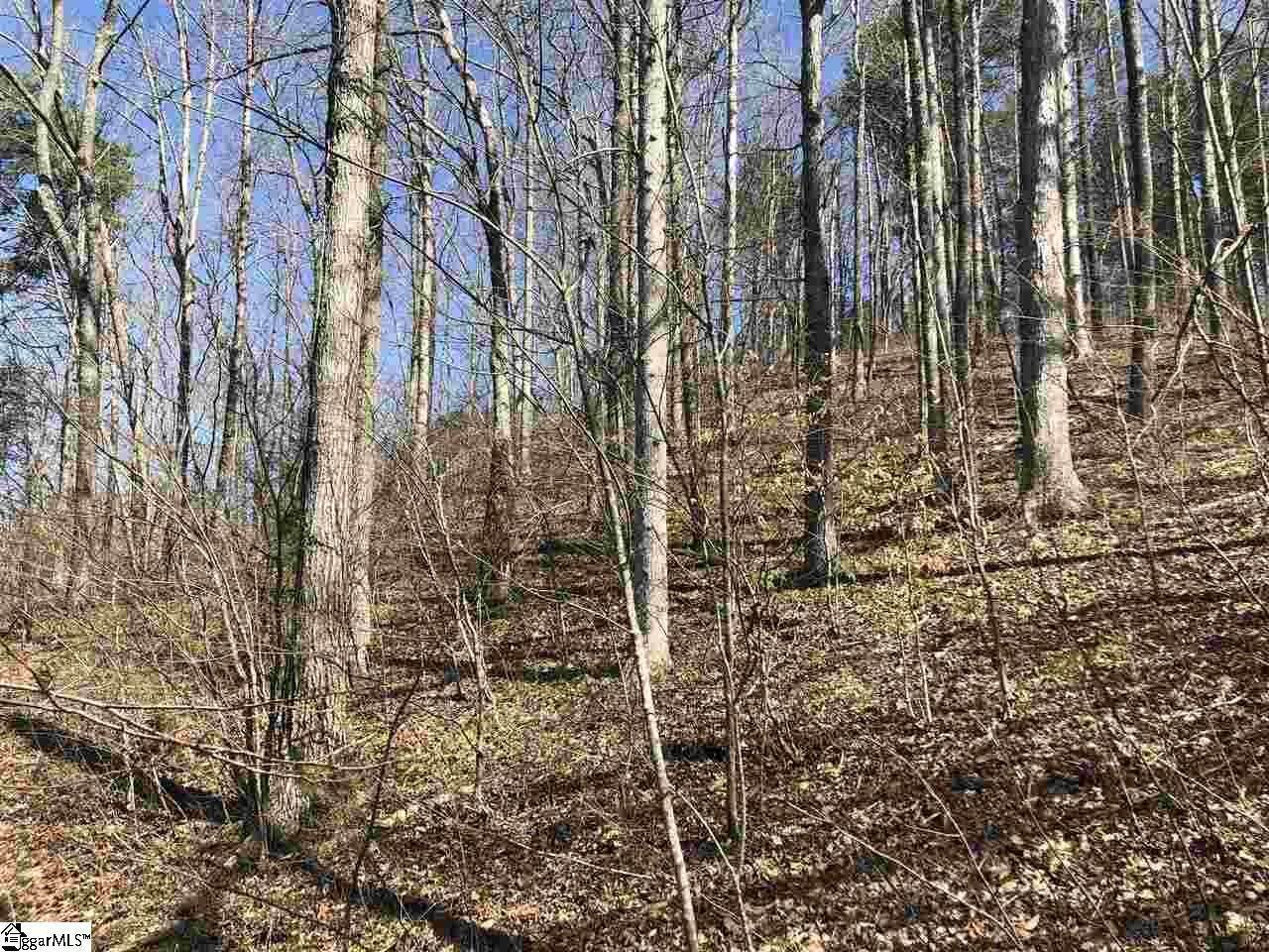 23. Residential Lot for Sale at The Reserve At Lake Keowee, Sunset, SC 29685