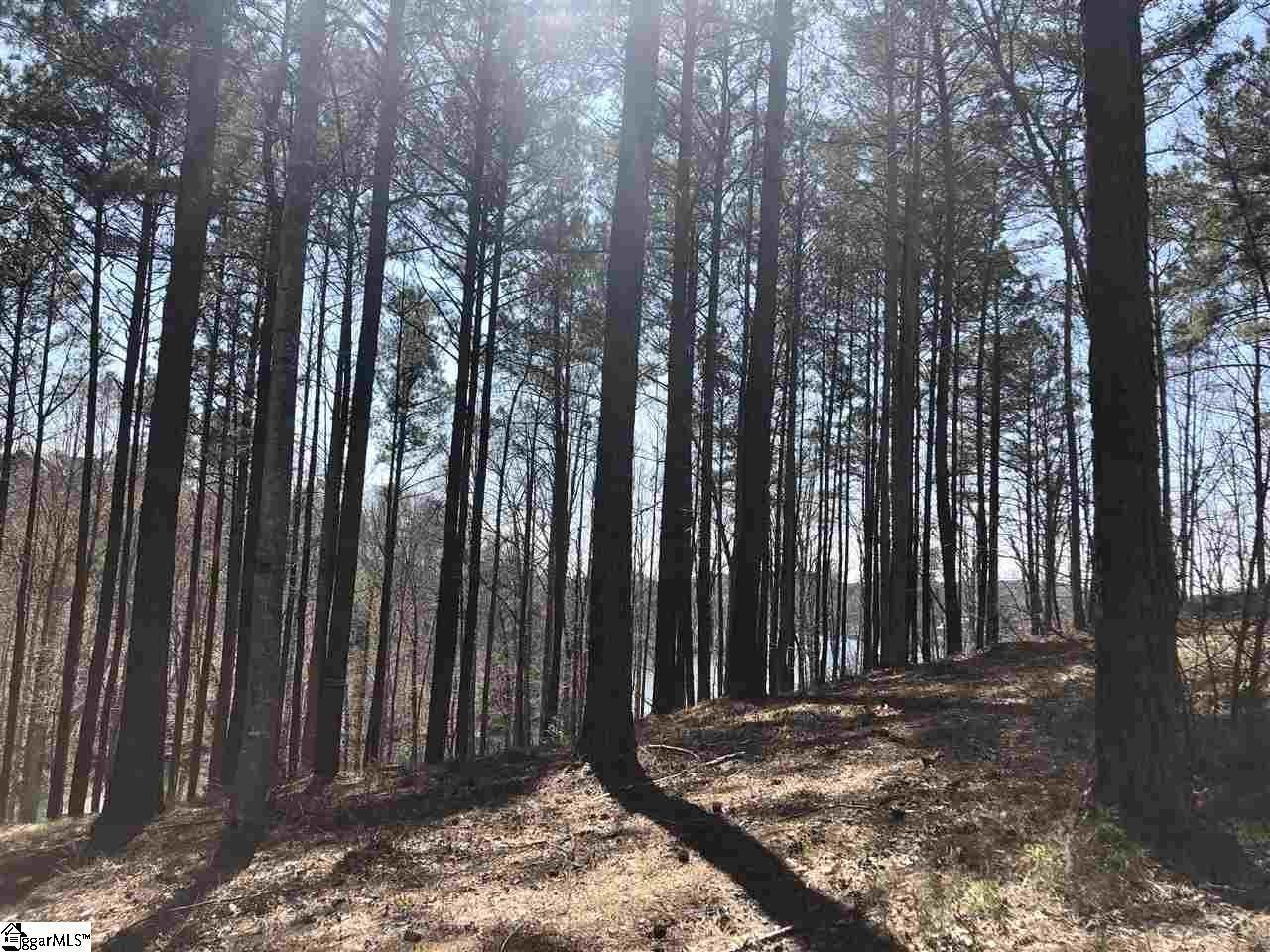 9. Residential Lot for Sale at The Reserve At Lake Keowee, Sunset, SC 29685