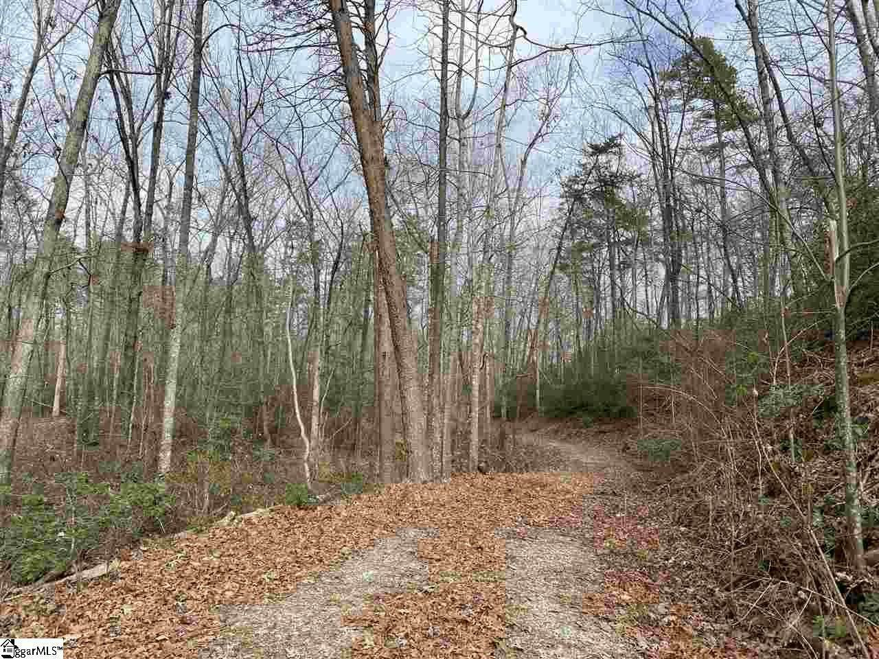 8. Residential Lot for Sale at The Cliffs At Keowee, Sunset, SC 29685