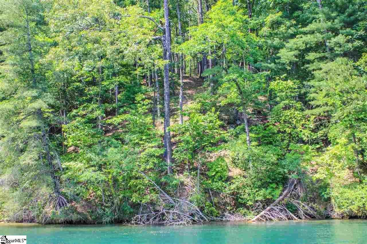 4. Residential Lot for Sale at The Cliffs At Keowee Vineyards, Sunset, SC 29685
