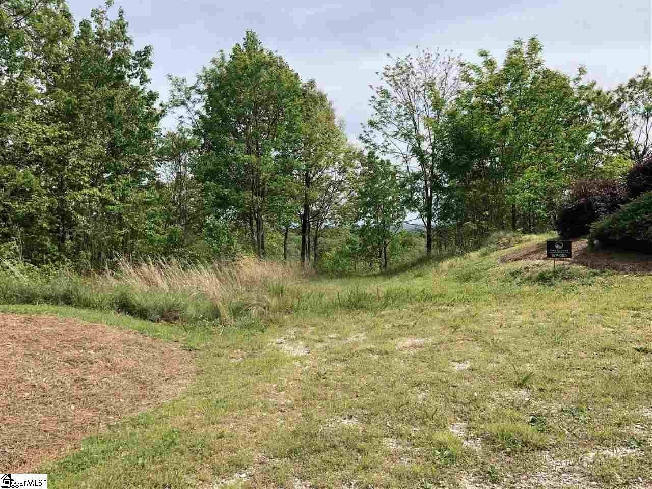 16. Residential Lot for Sale at The Cliffs At Mountain Park, Marietta, SC 29661