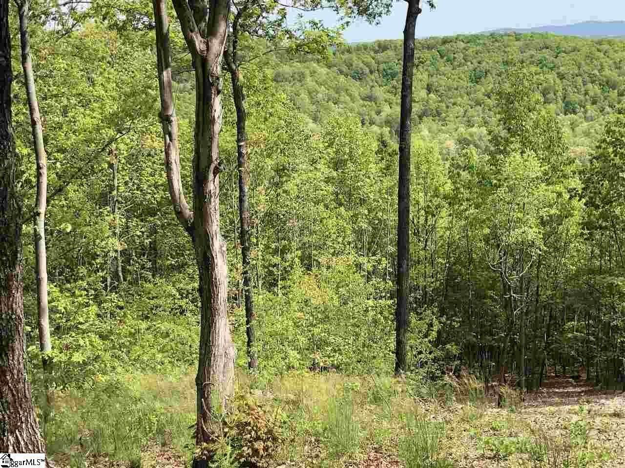 10. Residential Lot for Sale at The Cliffs At Mountain Park, Marietta, SC 29661