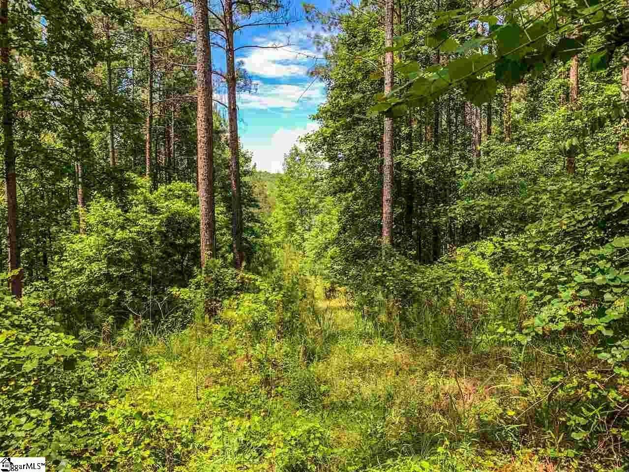 Residential Lot for Sale at The Cliffs At Keowee Springs, Six Mile, SC 29682