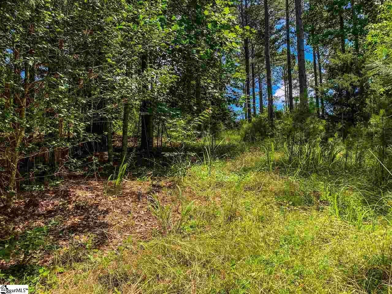 2. Residential Lot for Sale at The Cliffs At Keowee Springs, Six Mile, SC 29682