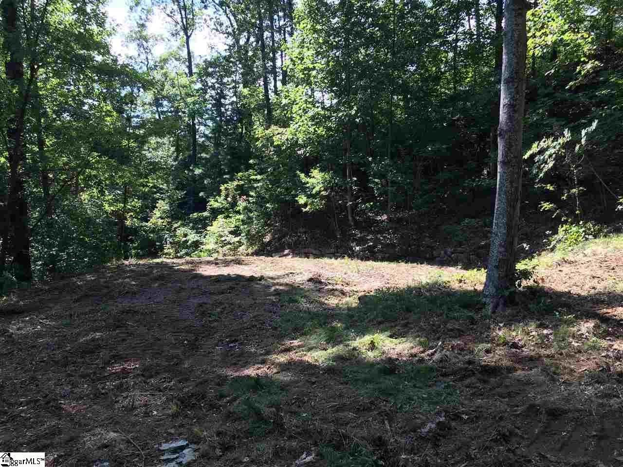 14. Residential Lot for Sale at The Cliffs At Mountain Park, Marietta, SC 29661