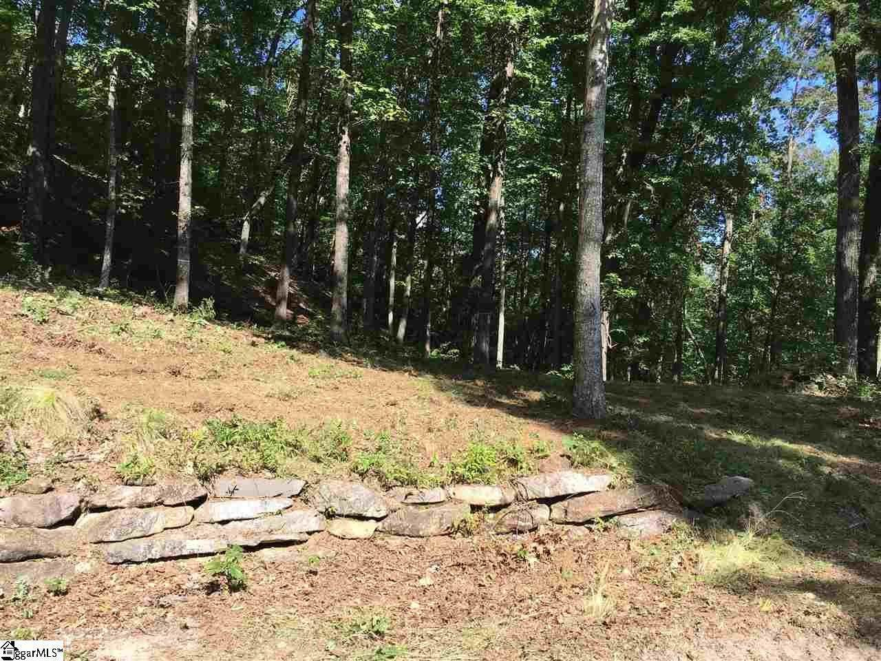 9. Residential Lot for Sale at The Cliffs At Mountain Park, Marietta, SC 29661