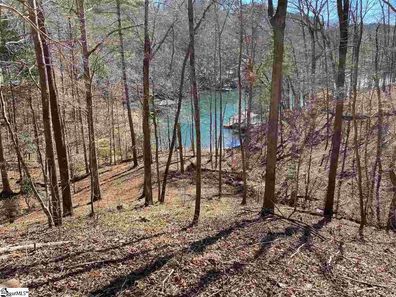 Property for Sale at The Reserve At Lake Keowee, Sunset, SC 29685