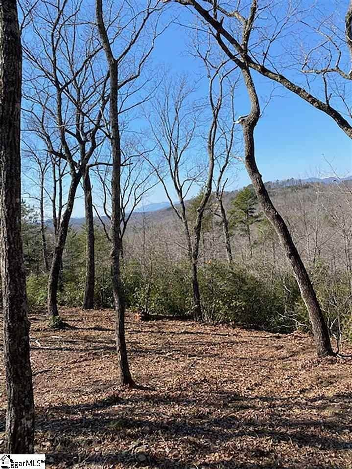 11. Residential Lot for Sale at The Cliffs At Mountain Park, Marietta, SC 29661