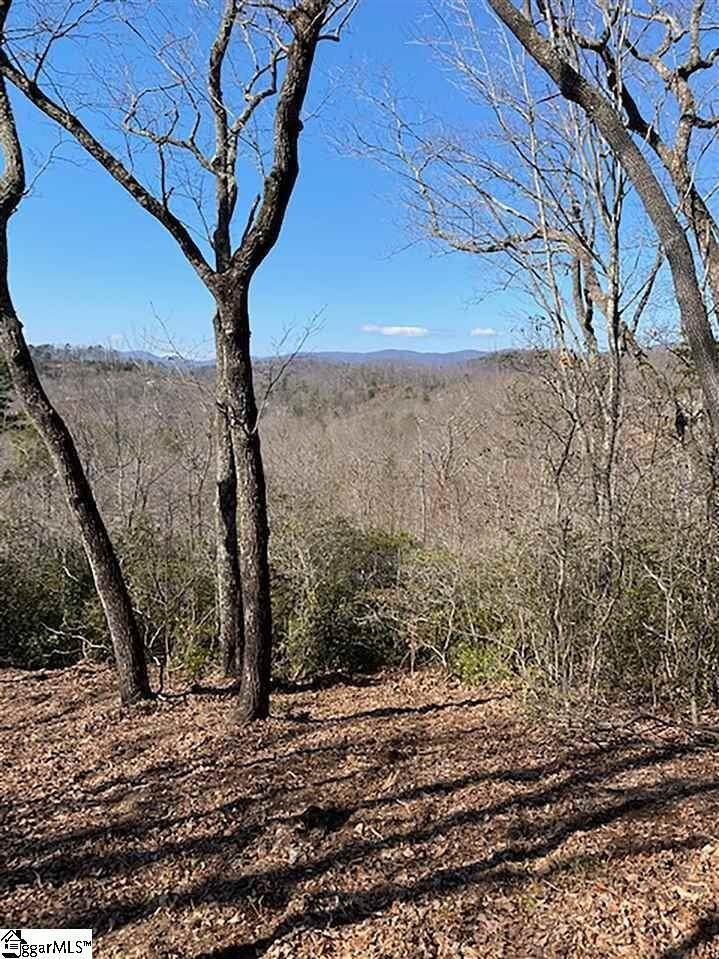 12. Residential Lot for Sale at The Cliffs At Mountain Park, Marietta, SC 29661