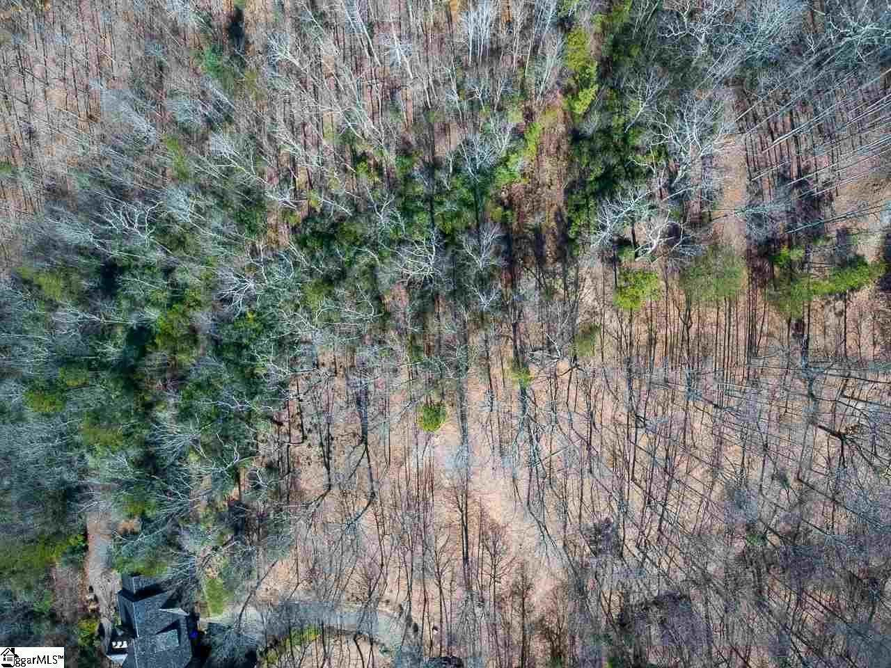 24. Residential Lot for Sale at The Cliffs At Mountain Park, Marietta, SC 29661