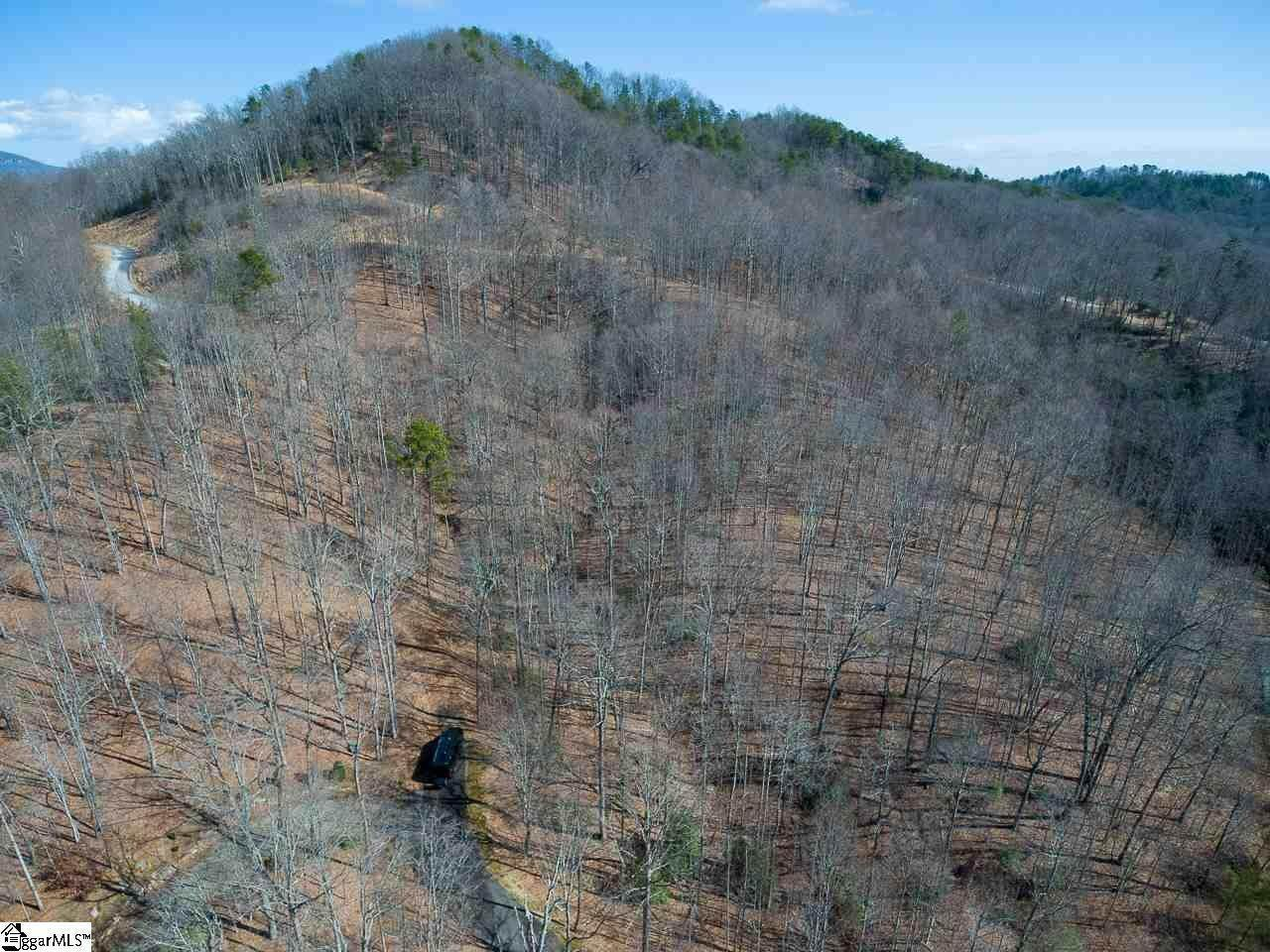 29. Residential Lot for Sale at The Cliffs At Mountain Park, Marietta, SC 29661
