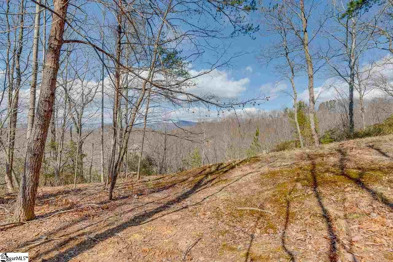7. Residential Lot for Sale at The Cliffs At Mountain Park, Marietta, SC 29661