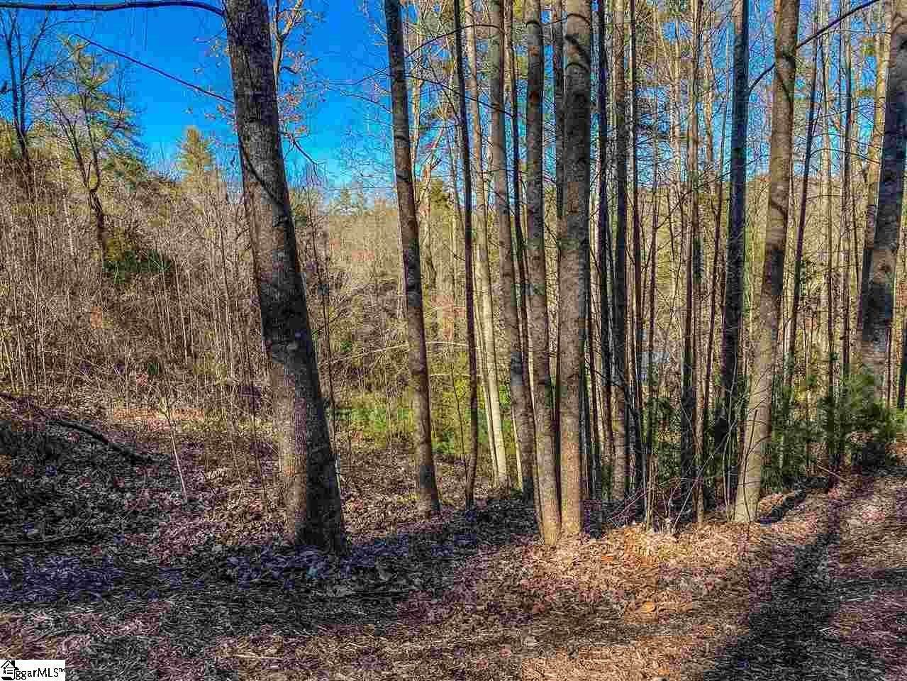 12. Residential Lot for Sale at The Cliffs At Keowee Falls North, Salem, SC 29676