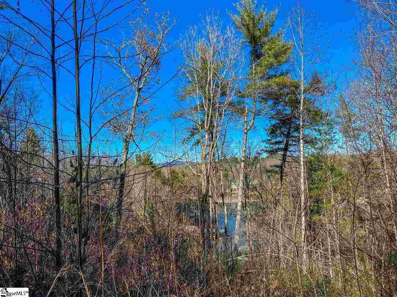 10. Residential Lot for Sale at The Cliffs At Keowee Falls North, Salem, SC 29676