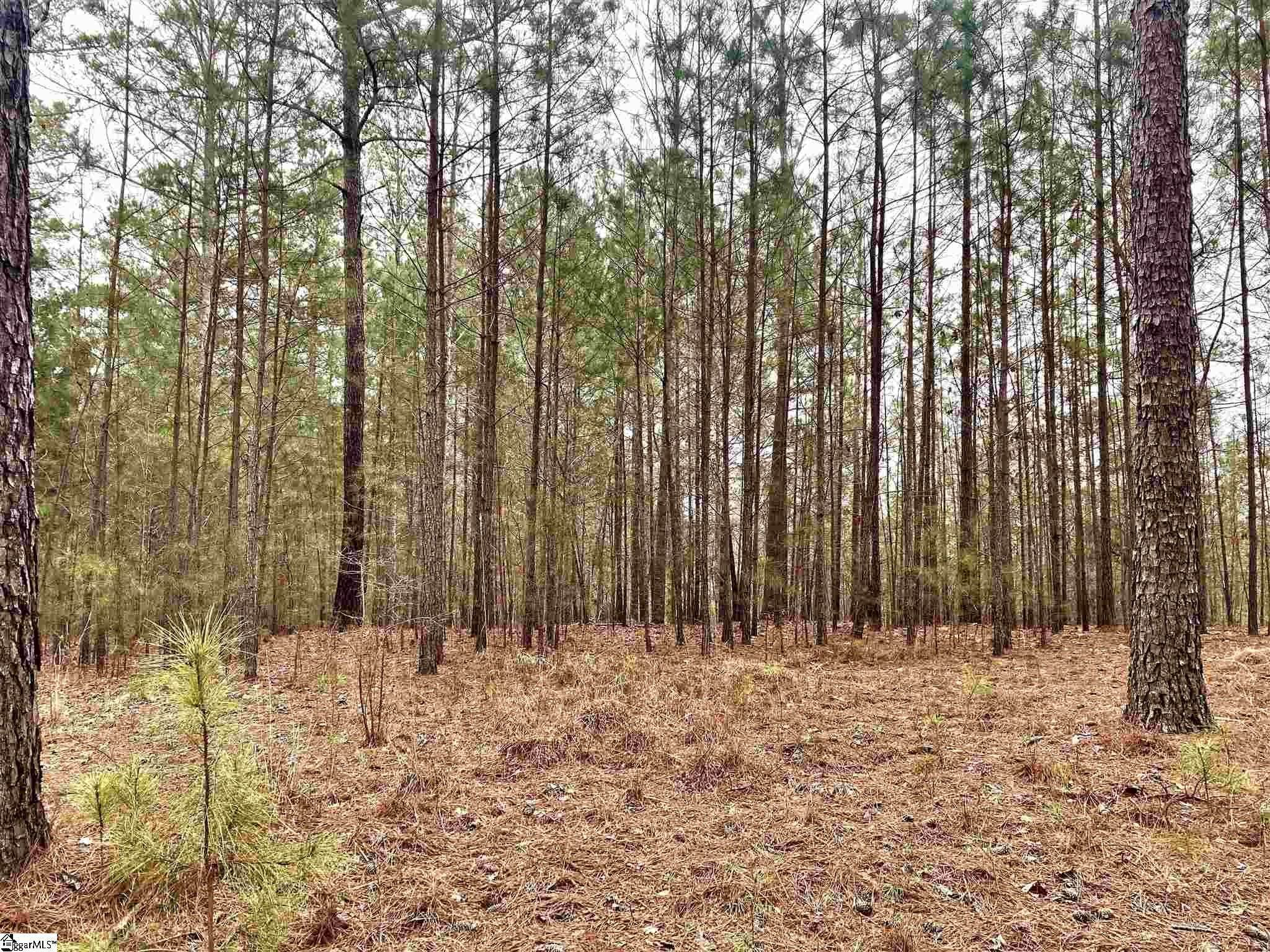 1. Residential Lot for Sale at The Cliffs At Keowee Springs, Six Mile, SC 29682