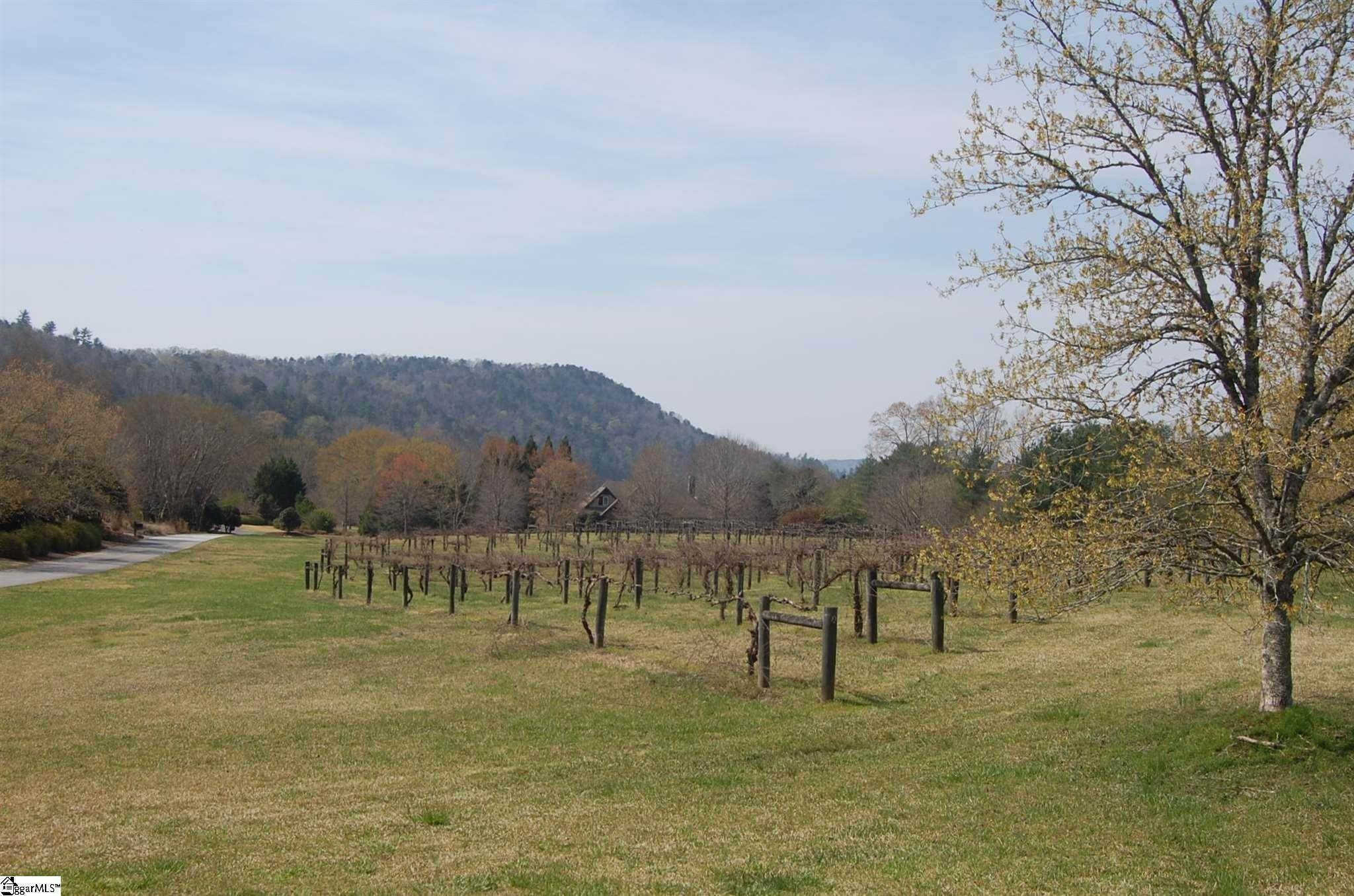 5. Residential Lot for Sale at The Cliffs At Keowee Vineyards, Sunset, SC 29685